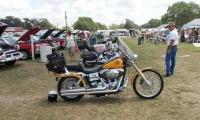 Bike Gal 2