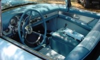 Car Gal 7