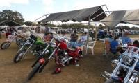 Bike Gal 11a
