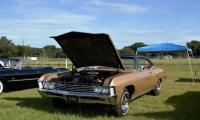 Car Gal 12